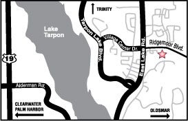 palmharbor_map